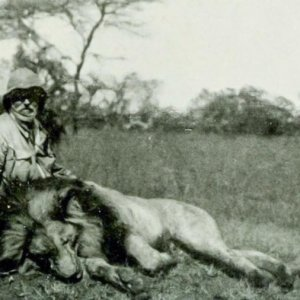 W.S. Richardson with carcass of a lion