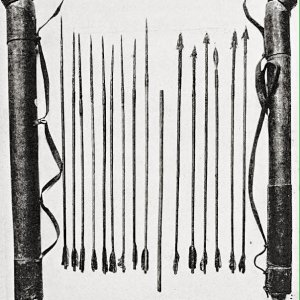 Arrow and quiver of the Dorobo